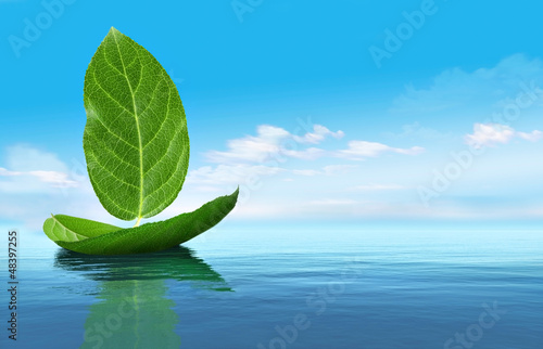 Fotografia  Boat from leaves