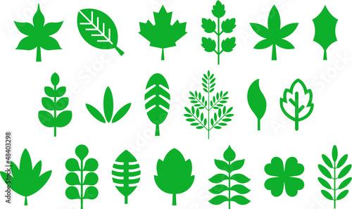 Fototapeta Set of vectorized leafs obraz na płótnie
