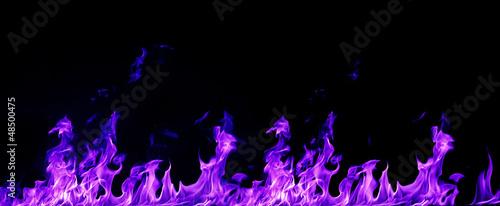 Flamme Purpur