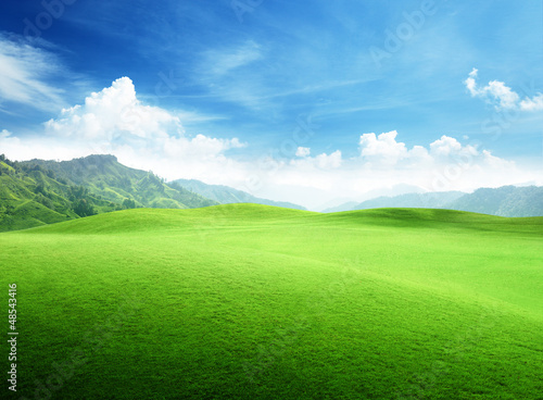 Photo sur Aluminium Piscine field of grass in mountain