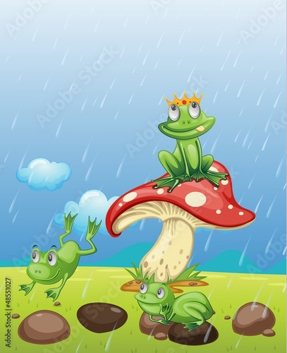 Poster Magische wereld Frogs playing in the rain