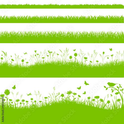 vektor blumenwiese gras grashalme wiese  kaufen sie diese