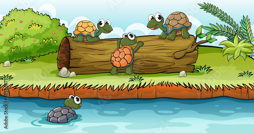 Canvas Prints River, lake Turtles on a dry wood