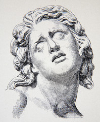 Litography of  bust