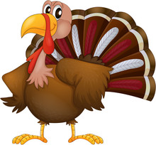 An Angry Turkey