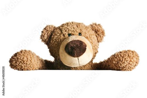 Carta da parati teddy bear behind a white board