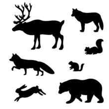 Set Wild Animals.