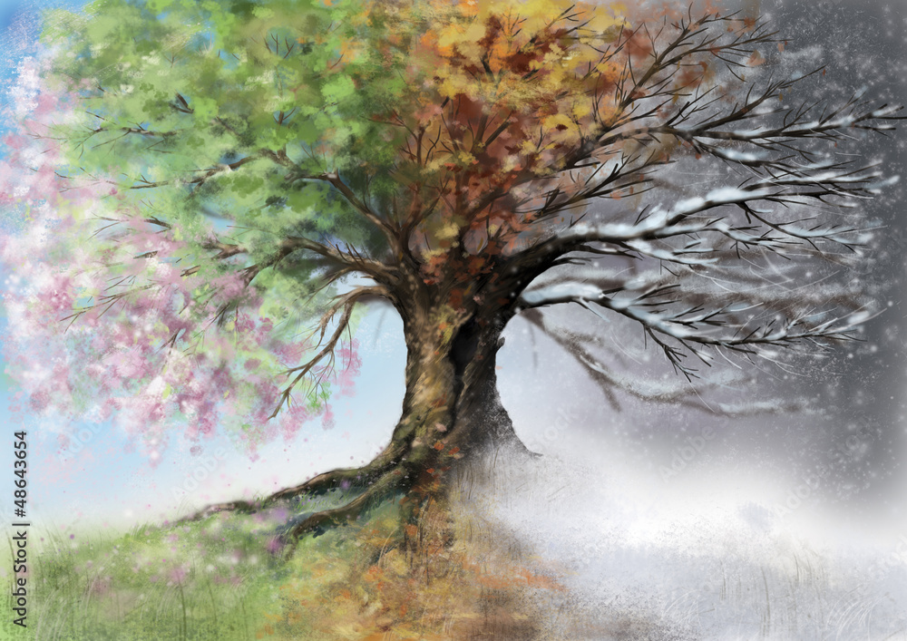Fototapety, obrazy: Digital illustration of four seasons tree