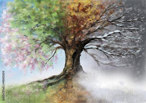 Fotografie, Tablou  Digital illustration of four seasons tree