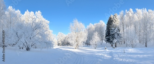 park-zimowy