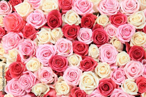 biale-i-rozowe-roze-w-aranzacji