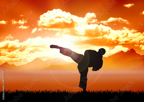 Photo Stands Martial arts Stock illustration of Karate training
