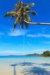 Качели на кокосовой пальме