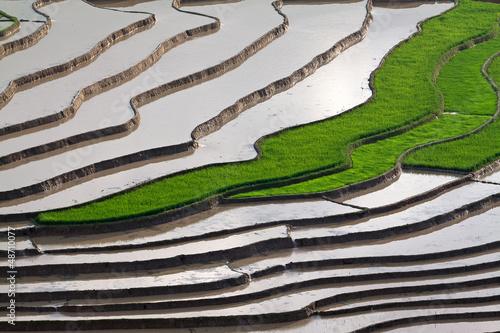 Photo  terraced rice fields with water in Mu Cang Chai, Yen Bai, Vietna