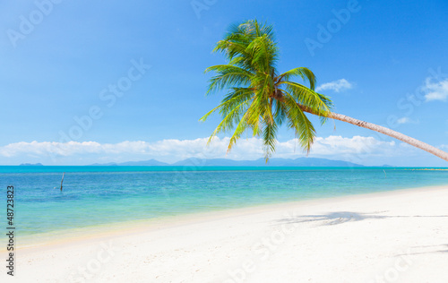 Foto-Schiebegardine Komplettsystem - beautiful beach with coconut palm and sea