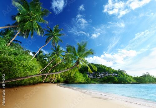 Foto-Leinwand - sunset on beach, Mahe island, seychelles