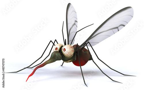 Fényképezés Fun mosquito