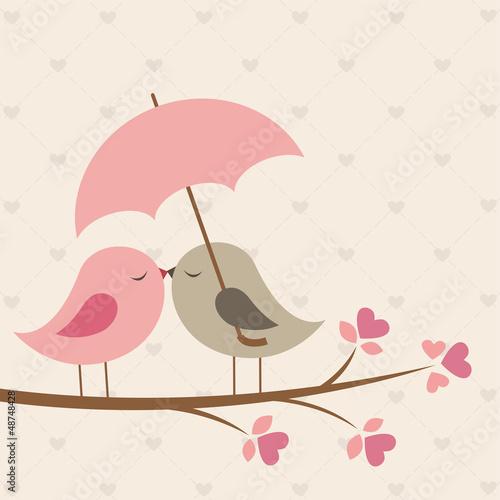 Photo  Birds under umbrella. Romantic card