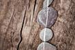 Leinwandbild Motiv Galets en ligne, fond bois