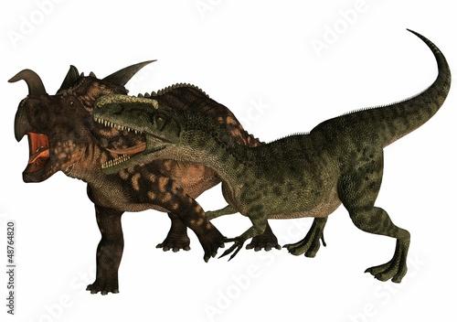 Fotografie, Obraz  einiosaurus contre monolophosaurus