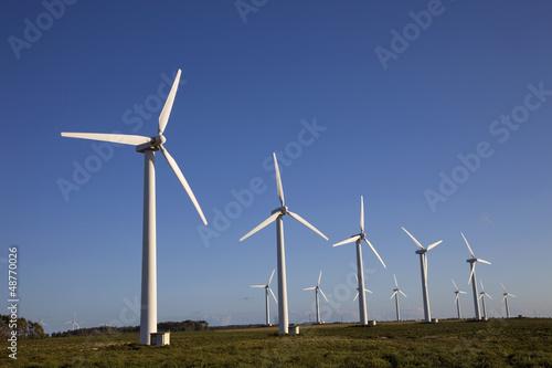 Fotografía  wind turbines