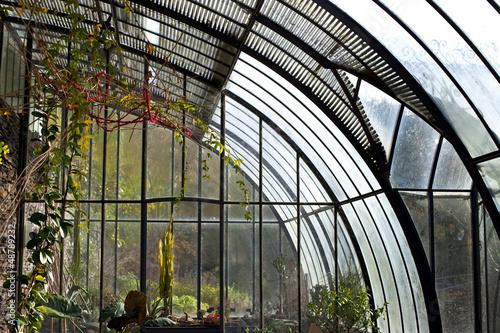 Véranda, serre, jardin, plantes, maison, jardinage, vert ...