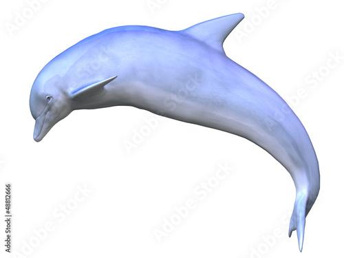 Foto op Plexiglas Dolfijnen 3d dolphin