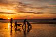 Leinwandbild Motiv Trearddur Bay Sunset
