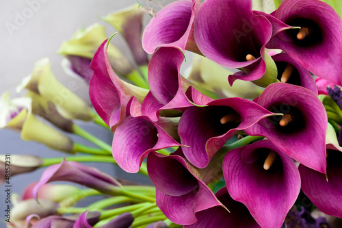 Beautiful bouquet of calla lilies. Wallpaper Mural