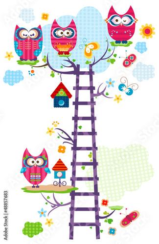 fototapeta na drzwi i meble Owl `s drzewa