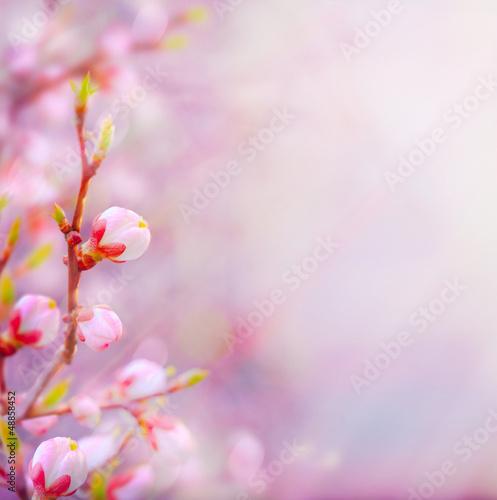sztuka-piekna-wiosna-kwitnie-drzewa-na-tle-nieba