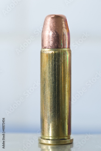 Poster  .38 Special round nose FMJ round