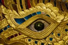 Naga Eye Close Up