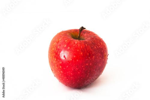Fototapeta Mokre,czerwone jabłko na białym tle obraz