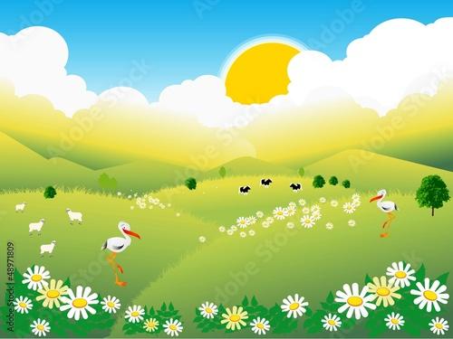 Fototapeta wiosenna wieś obraz