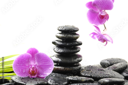 Fototapety, obrazy: Stones tower with orchid and palm leaf on wet pebble