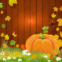 Autumn Still Life With Pumpkin For Your Design