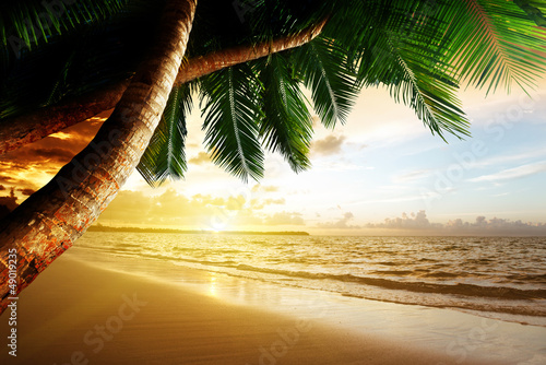 Poster Tropical plage sunrise on Caribbean beach