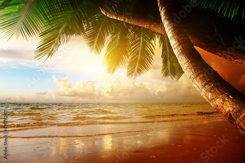 Foto-Leinwand - sunrise on Caribbean beach
