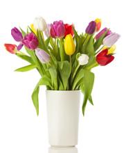 Tulpenstrauß In Weißer Vase, Isoliert