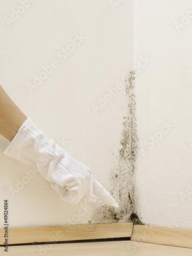 Schimmel Im Haus Finden schimmel in haus – kaufen sie dieses foto und finden sie ähnliche