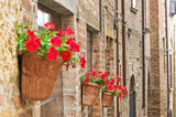 Fototapeta Uliczki - Alleyway. Castell'Arquato. Emilia-Romagna. Italy.
