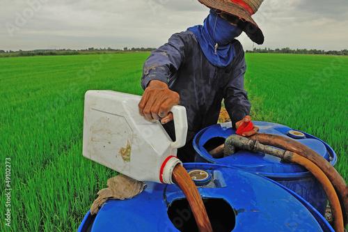 Fotografía  farmer mixing pesticide on the rice field