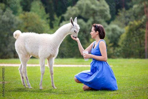 Poster Lama Young attractive woman feeding baby lama