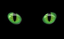 Dangerous Green Eyes On Black Background