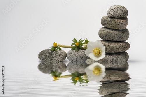 Plissee mit Motiv - Balance with stones