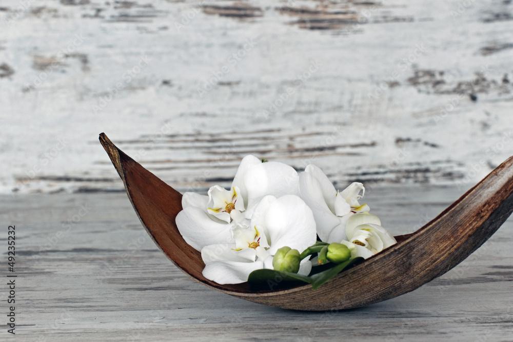 Fototapety, obrazy: Orchideen in Palmblattschale