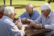 canvas print picture - Active seniors, group of old friends playing cards at park