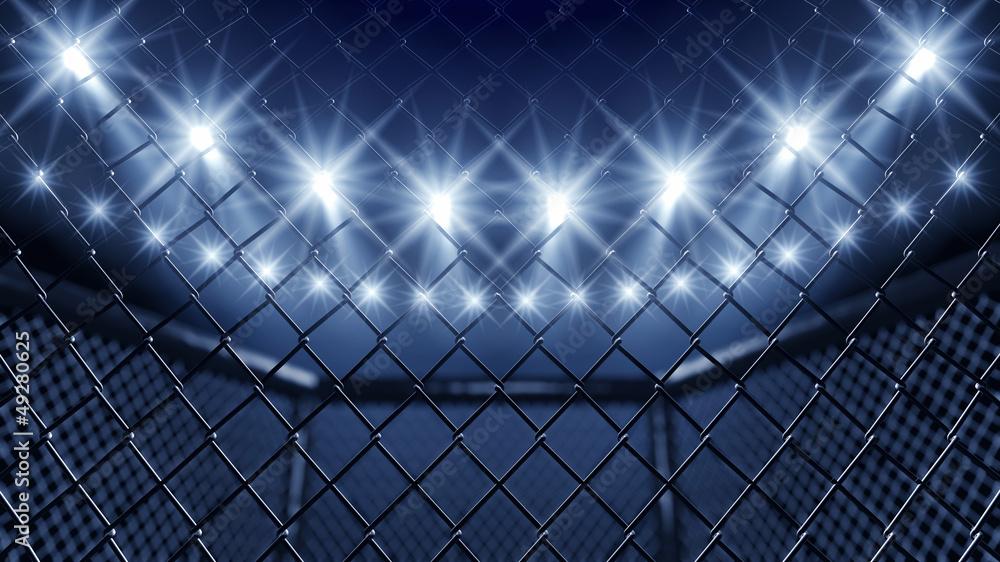Klatka MMA i reflektory <span>plik: #49280625   autor: nobeastsofierce</span>