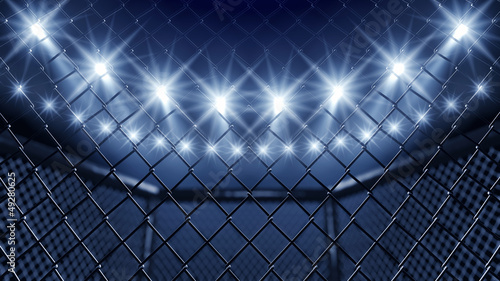 Photo Stands Martial arts MMA cage and floodlights